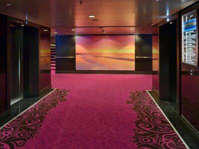 Drymaster Carpet Cleaning Brisbane